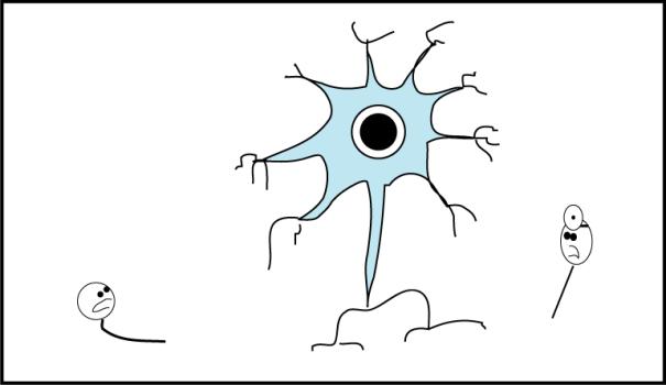 neuronn04