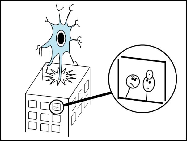 neuronn05