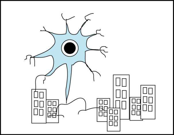 neuronn06